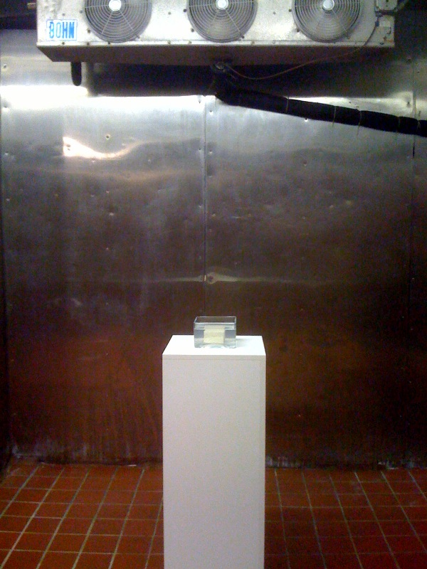 Tofu on Pedestal in Gallery, 2002-10