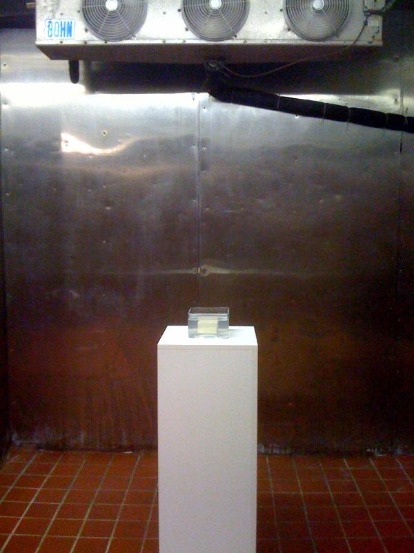 Tofu on Pedestal in Gallery, 2002-10
