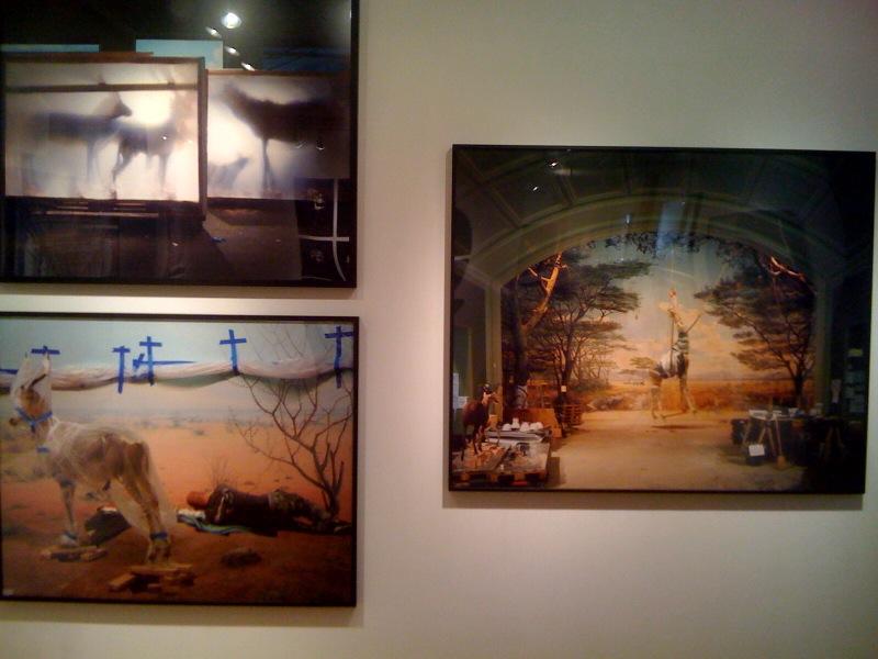 Backlit Hoofed Animals, SF, 05, Man with Blue Crosses, SF, 06, Giraffe, 05