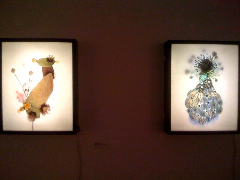 Seung Ae Kim, The Hybrid Garden (Lamb's ear), 2008, The Hybrid Garden (Poppy flower), 2008