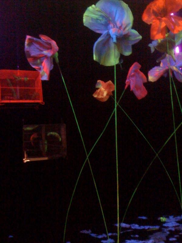 Garden of the Metamorphosis in the Space Capsule, 1968, interior c