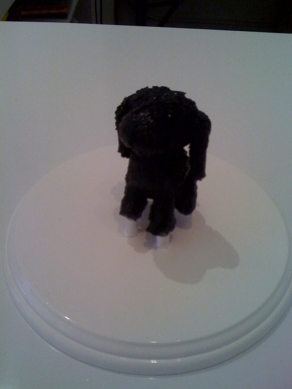 Tiny Black Dog 2