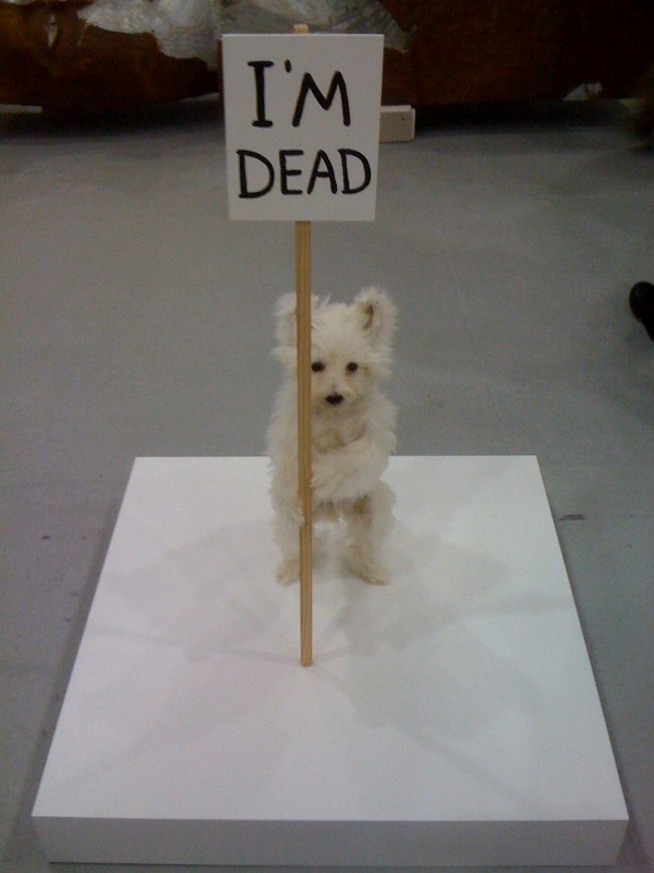 David Shrigley, I'm Dead, 2011, Anton Kern Gallery, NY at Independent