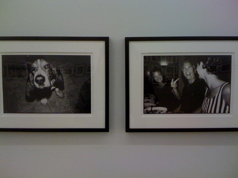 Dog, Paris, France, 1981, Alexandra Gray, Larry Gagosian and Rebecca Glenn, Antibes, France, 1991