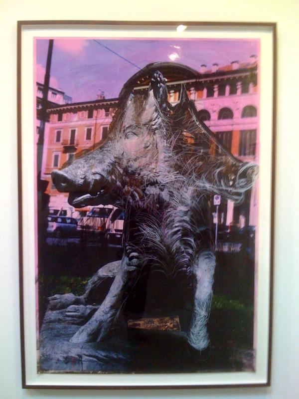 Untitled, 2010, boar
