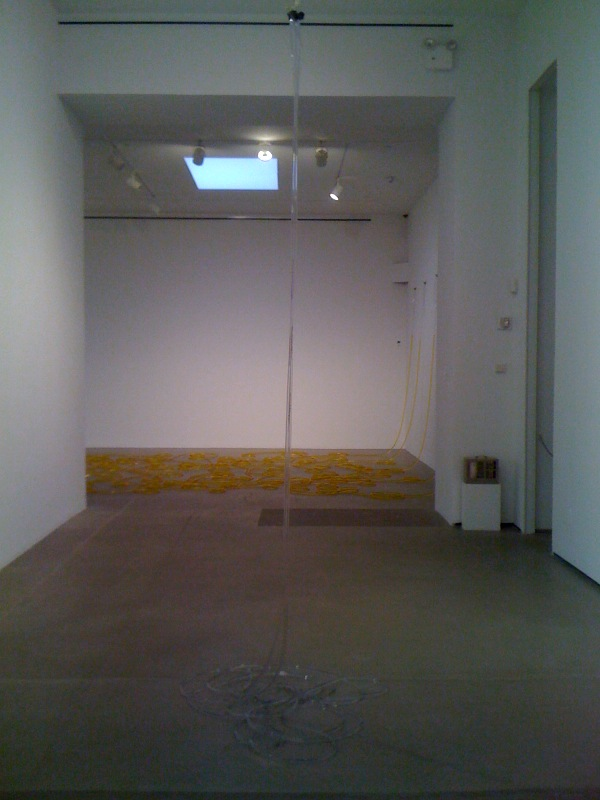 Untitled, 2011, clear