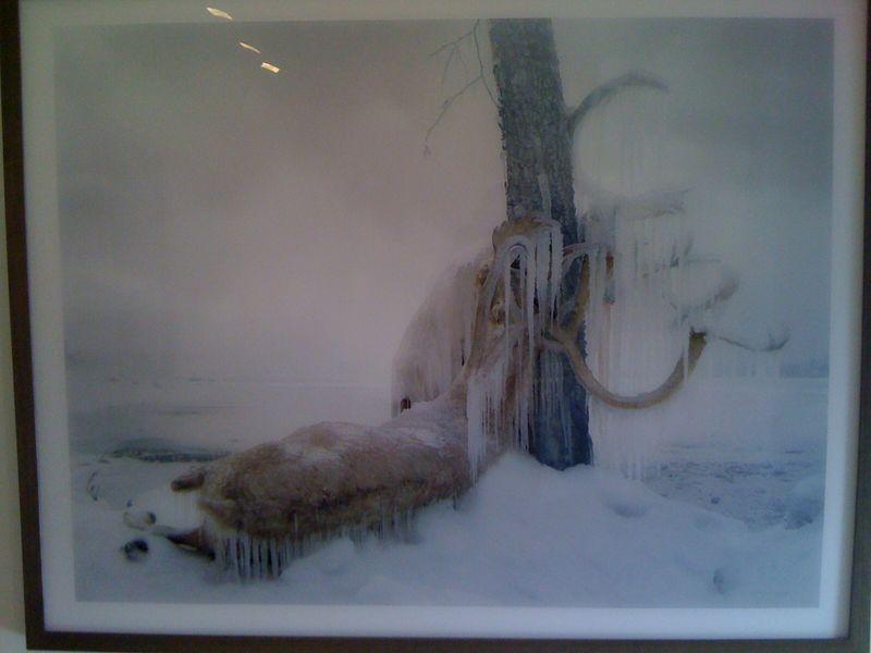 Untitled #159, 2011