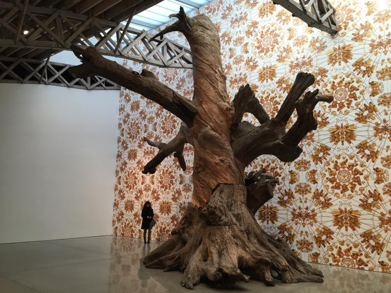 Mary Boone, Tree_1