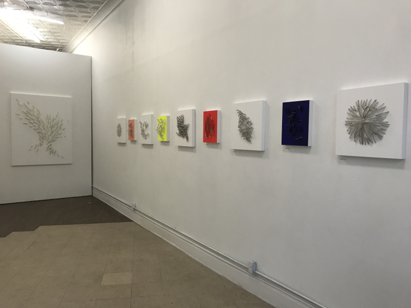 Natale Adgnot_Chromaticism installation view