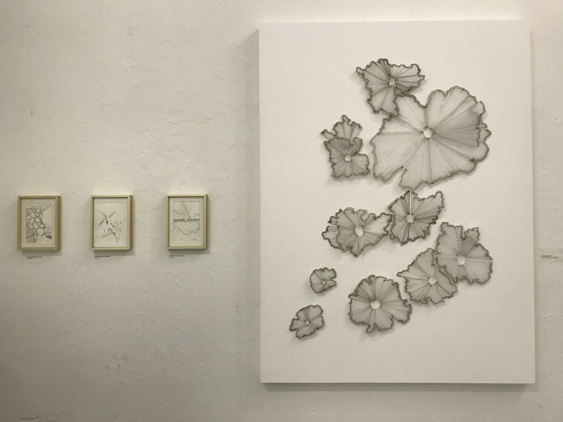 Natale Adgnot_Untitled (book 20  sketch 17)  2016  Untitled (book 22  sketch 08)  2016  Untitled (book 17  sketch 08)  2015  Pencil Shavings  2020